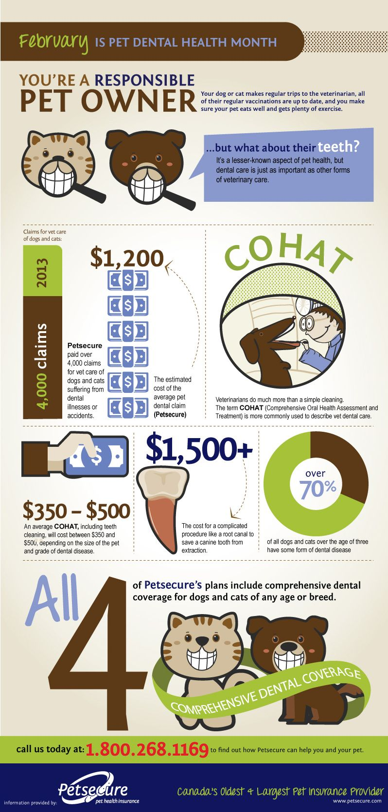 February is Pet Dental Health Month! Learn more about the