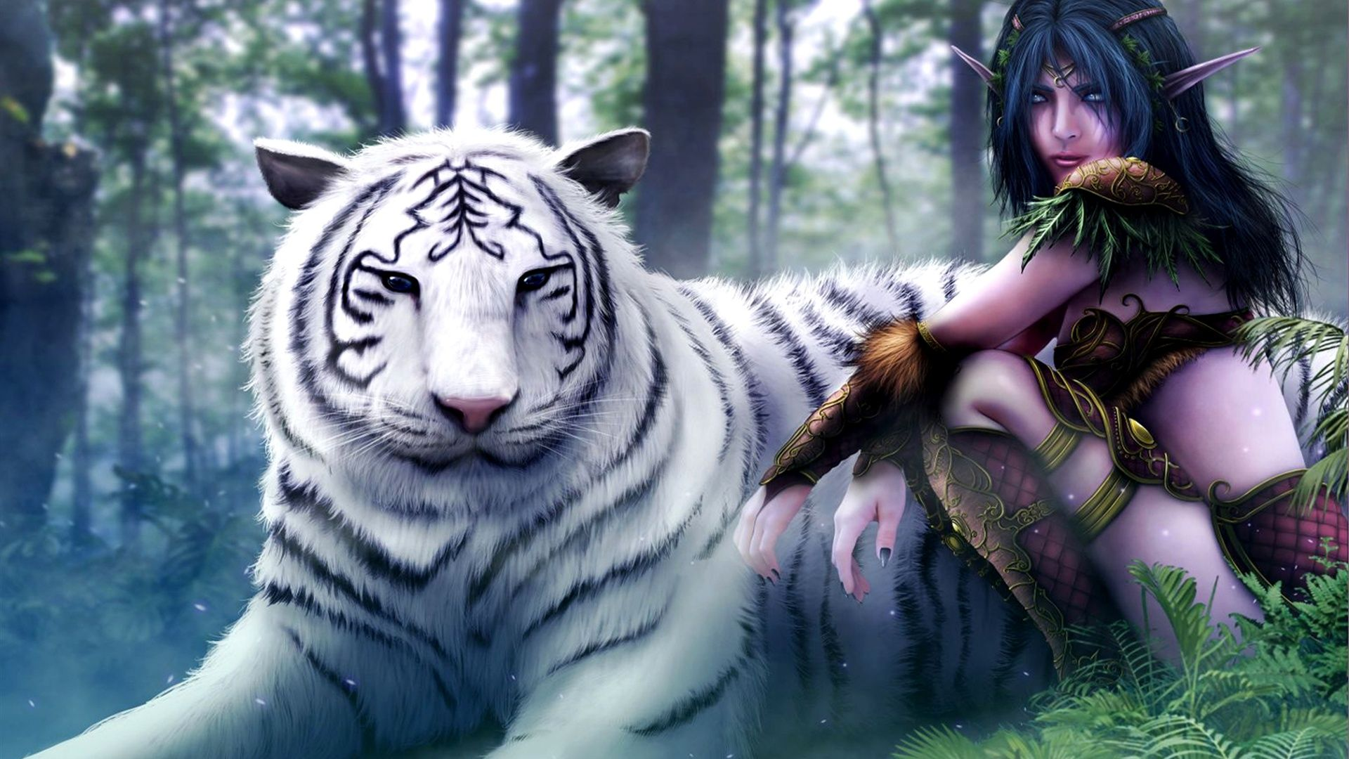tigre blanc fond d'écran Recherche Google animaux