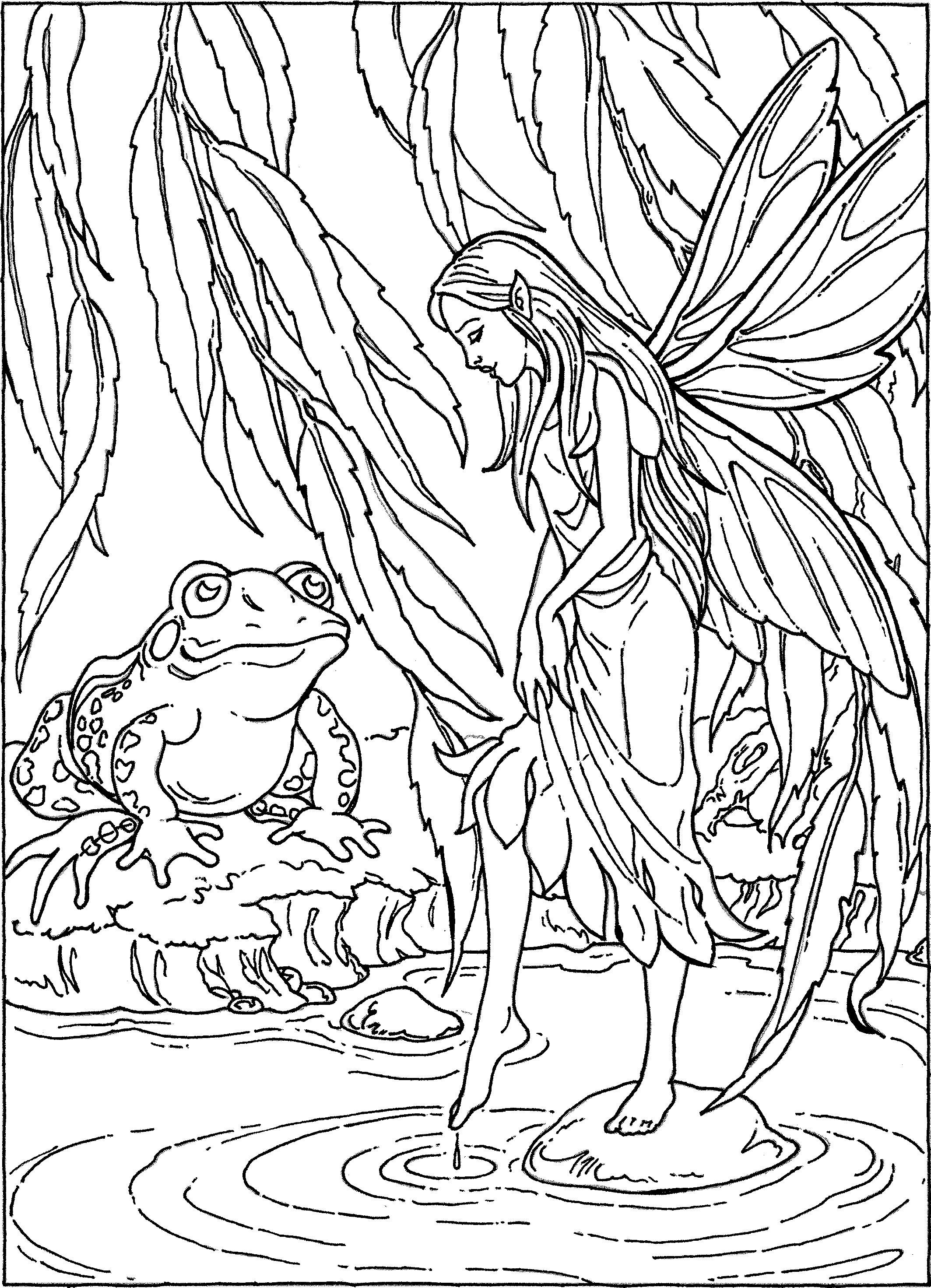 Fairy and pond frog coloring page Adult Colouring