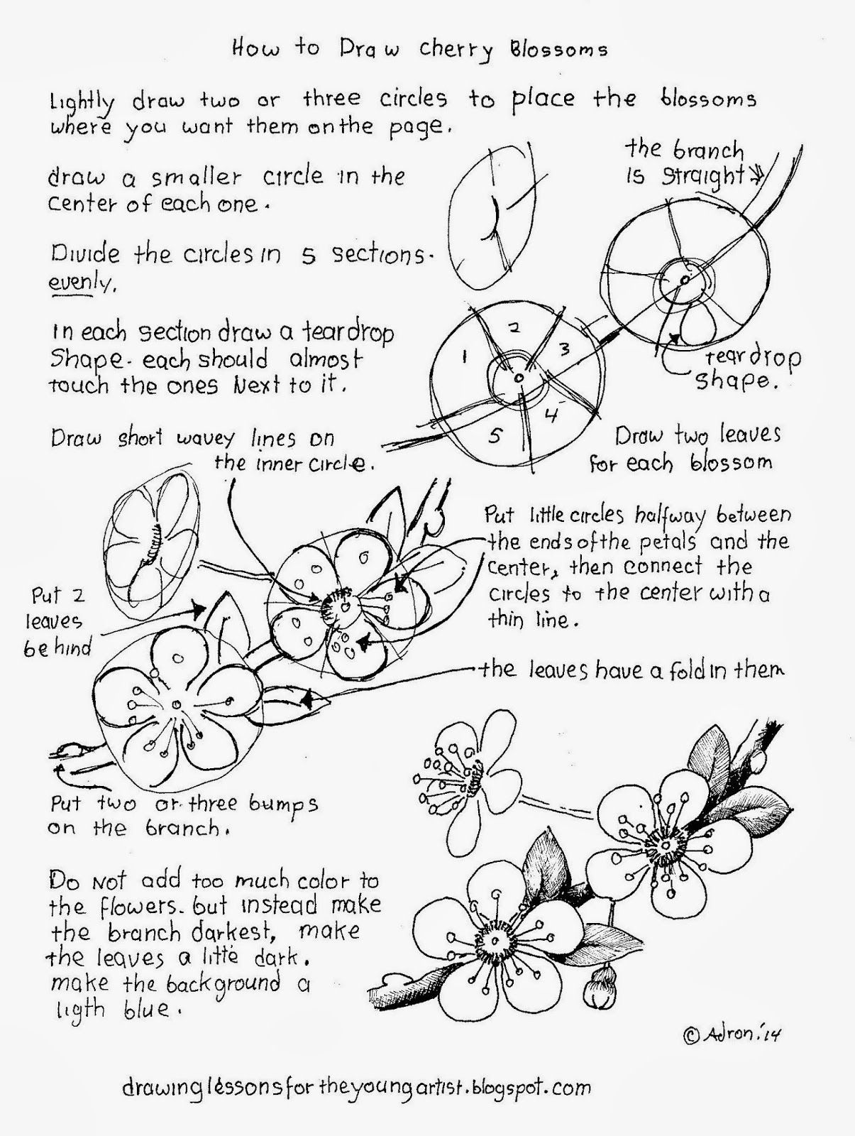 How To Draw Worksheets For The Young Artist Flowers