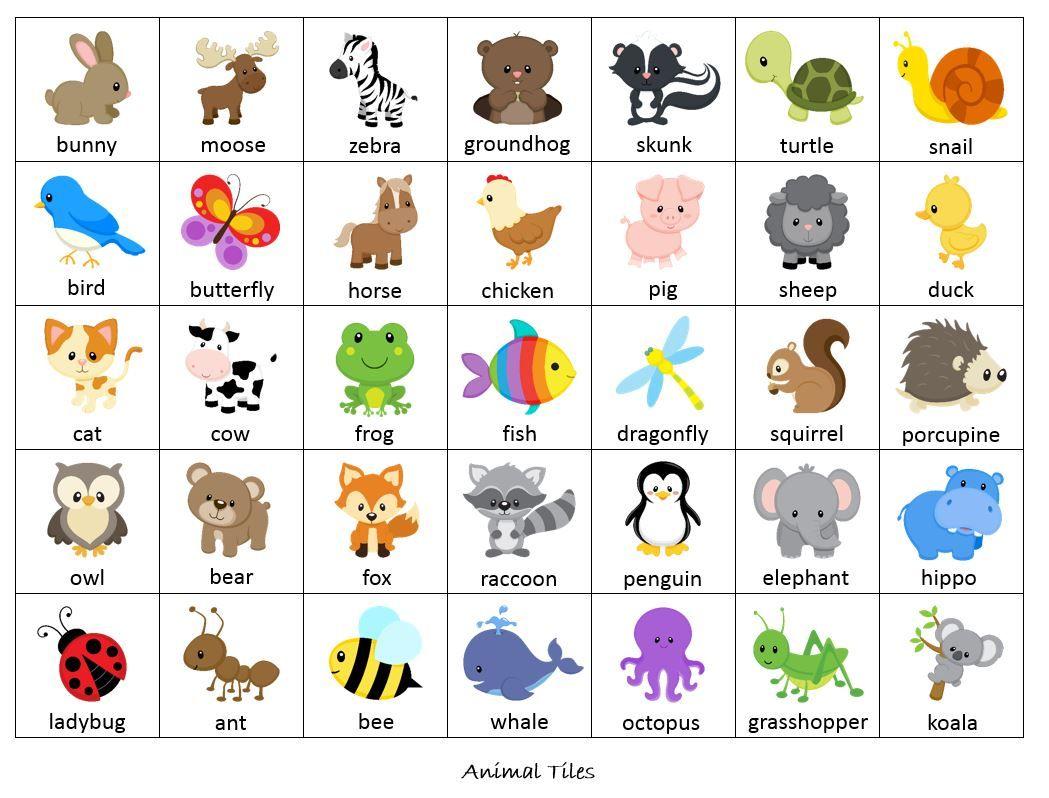 Bingo Worksheets Animals