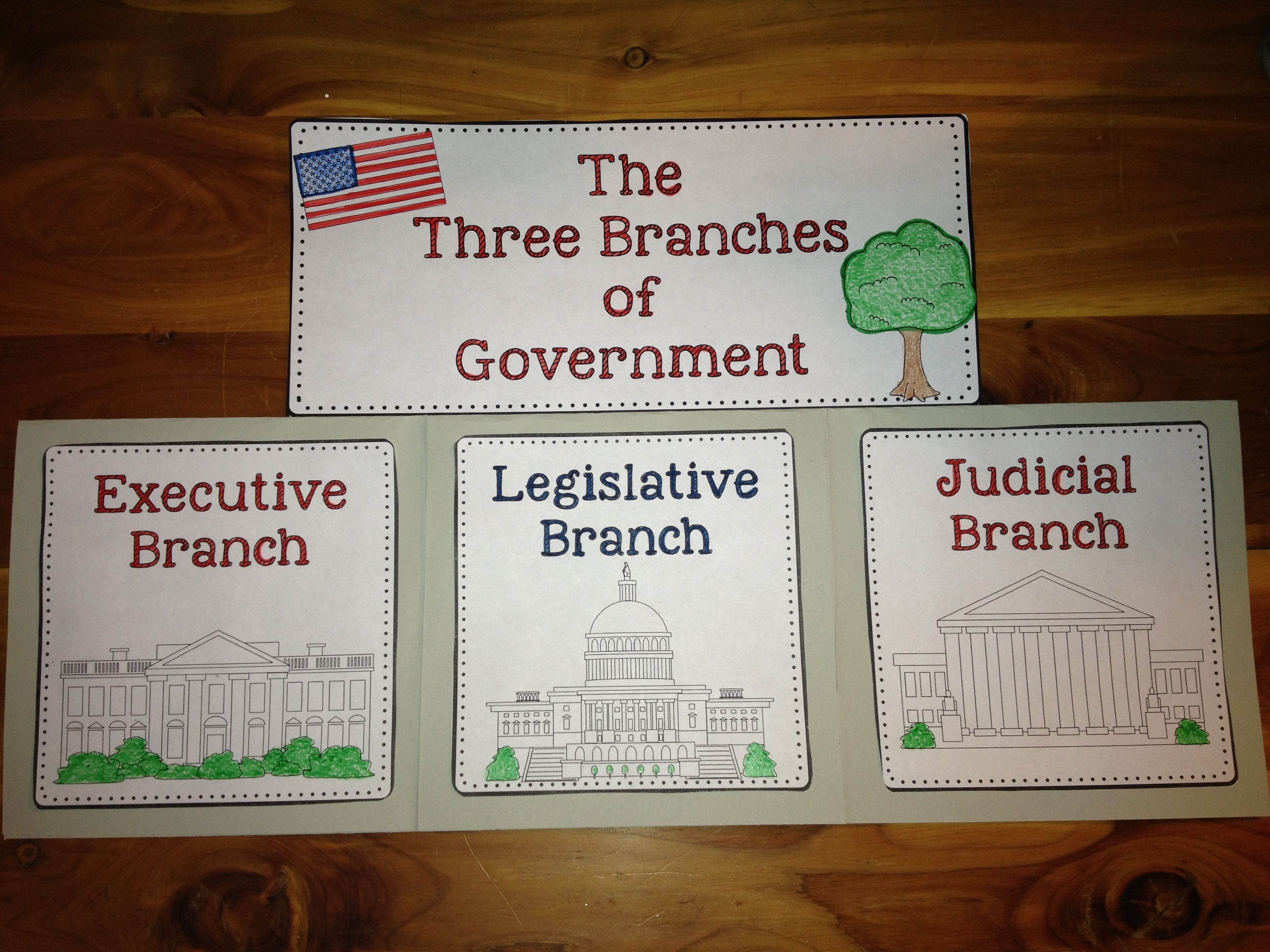 Constitution And The Three Branches Of Government A Complete Unit