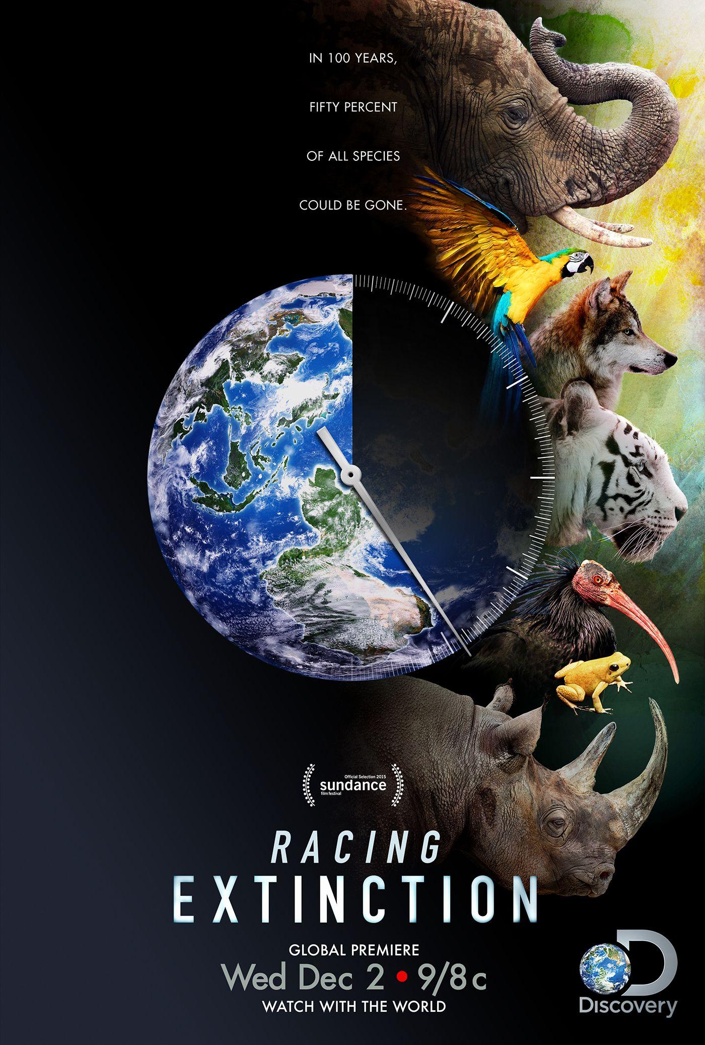 Mas De 25 Ideas Increibles Sobre Racing Extinction En Pinterest