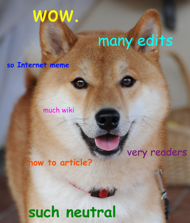 doge meme Google Search Doge Pinterest Meme