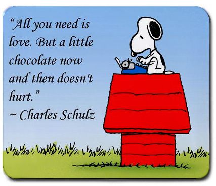 Image result for peanuts quote
