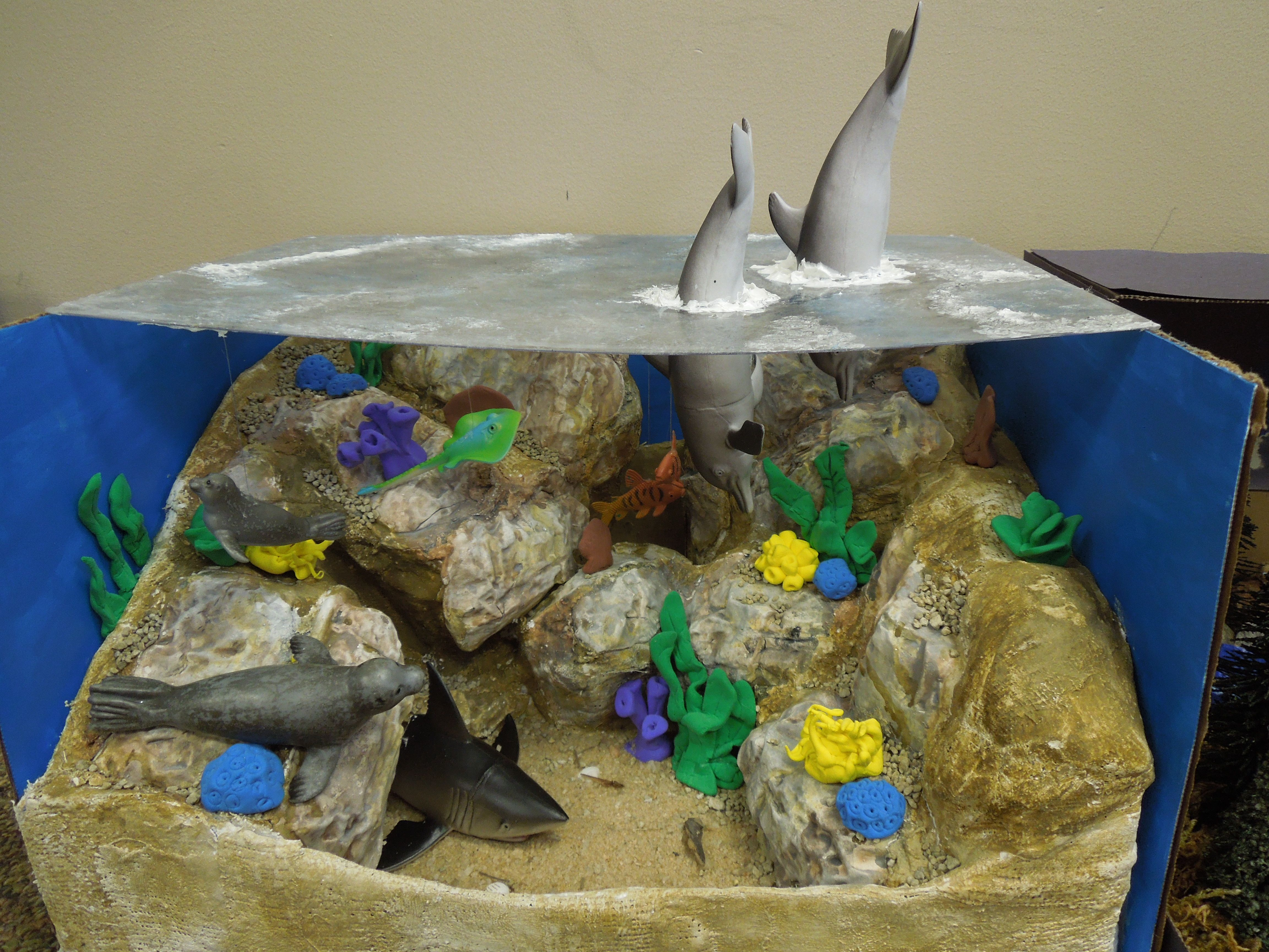 Second Graders Made A Diorama To Show An Animal Habitat