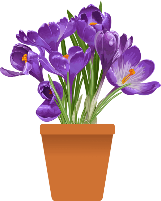 Clip Art of beautiful plants for the spring garden Clip
