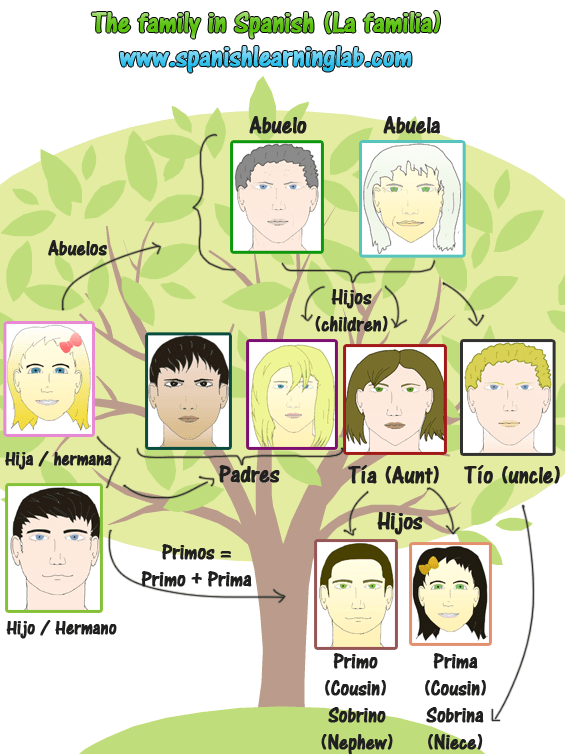 Some common family members in Spanish. Do you know how to