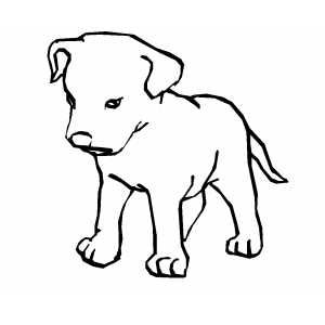 puppys printable coloring pages and coloring pages on pinterest