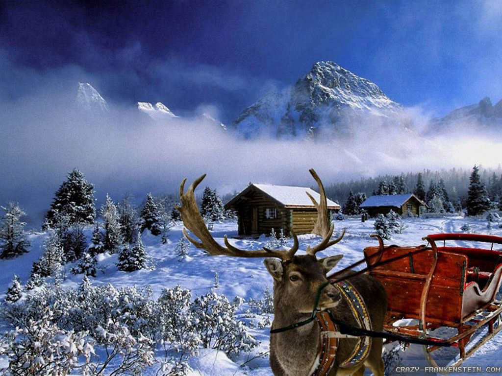 Winter Christmas Picture Amazing Wallpapers Pinterest