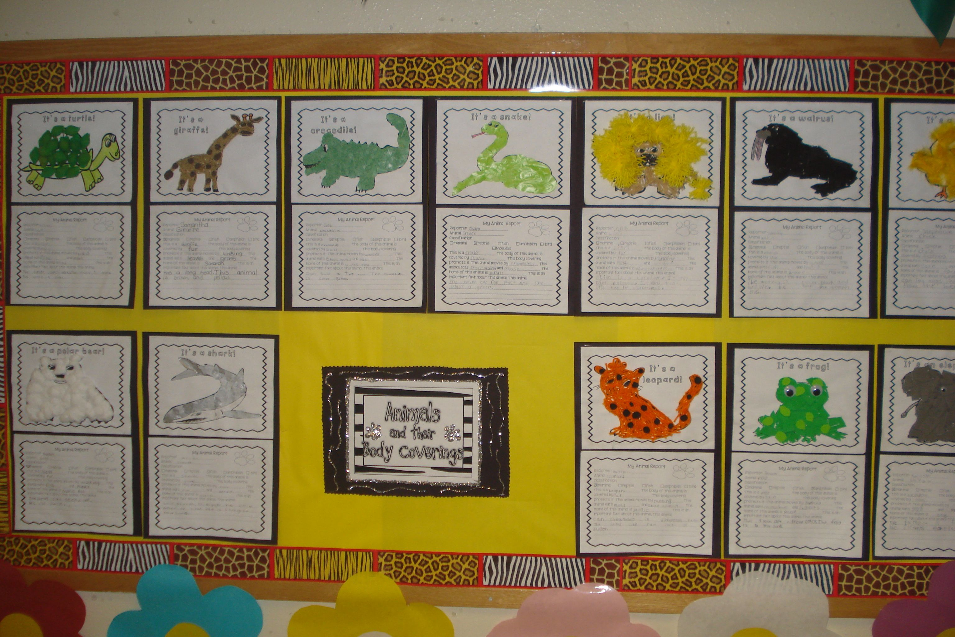 Bulletin Board About Body Coverings Of Animals Created By