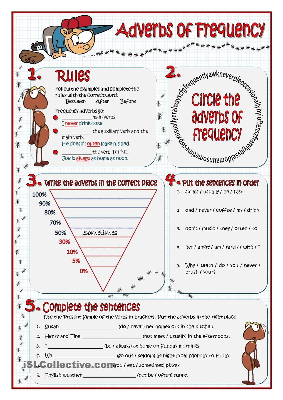 ADVERBS OF FREQUENCY adverbs of frequency Pinterest