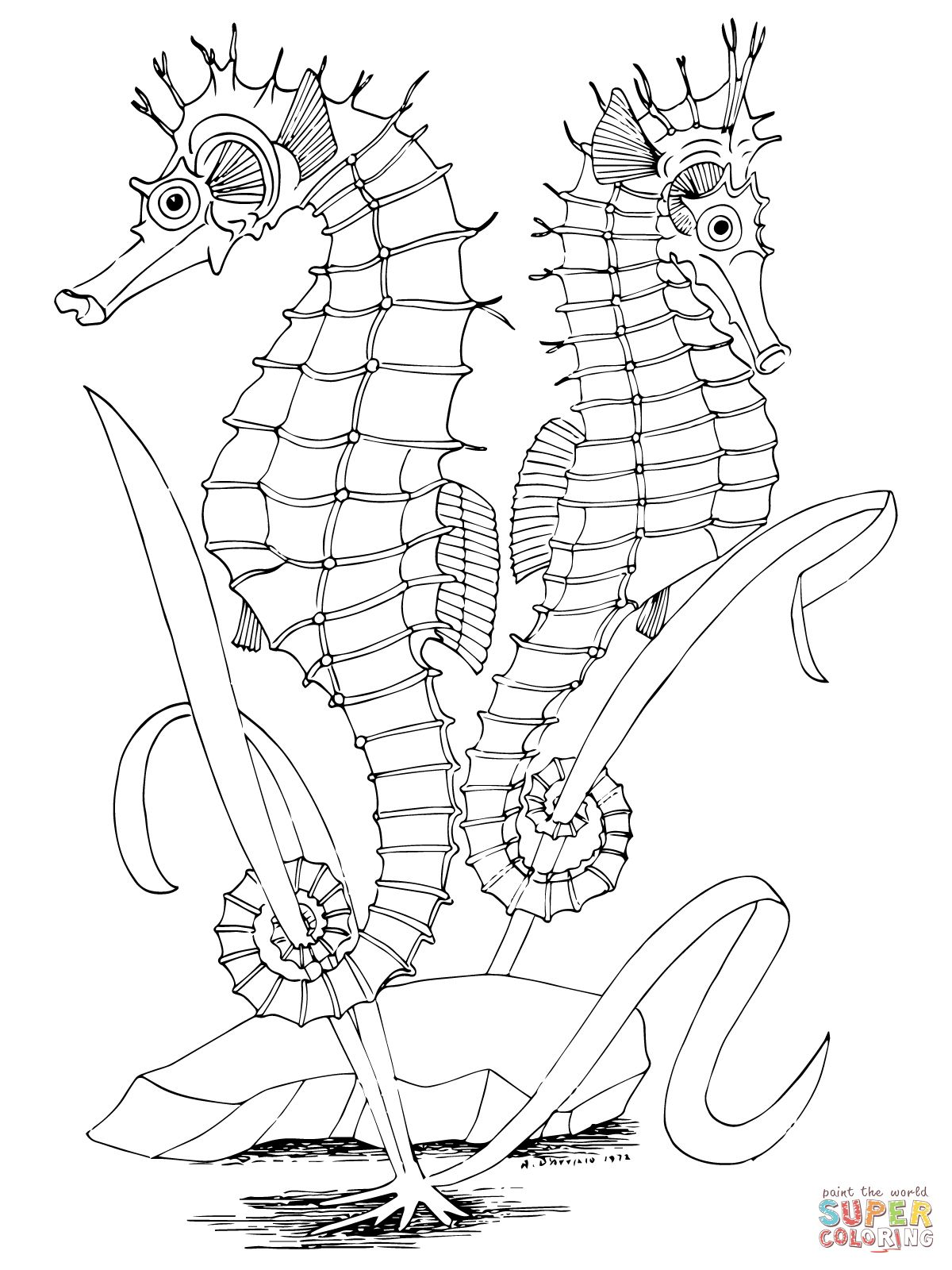 Two Seahorses coloring page