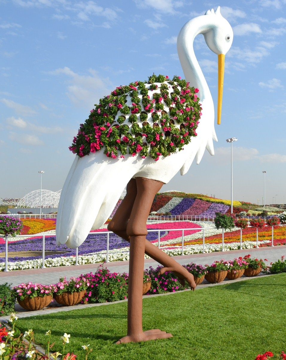 Amazing nature work done for Miracle Garden Dubai 3D