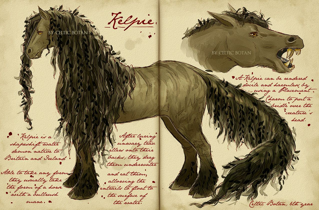 Care of Magical Creatures Assignment Kelpie by