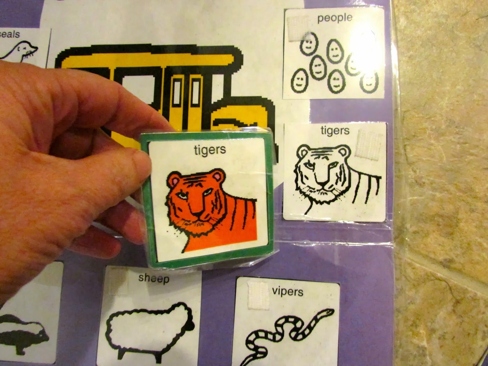Seals On The Bus Printables