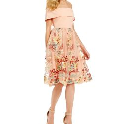 67e417316e Gianni Bini Laura Off The Shoulder Floral Mesh Dress  dillards