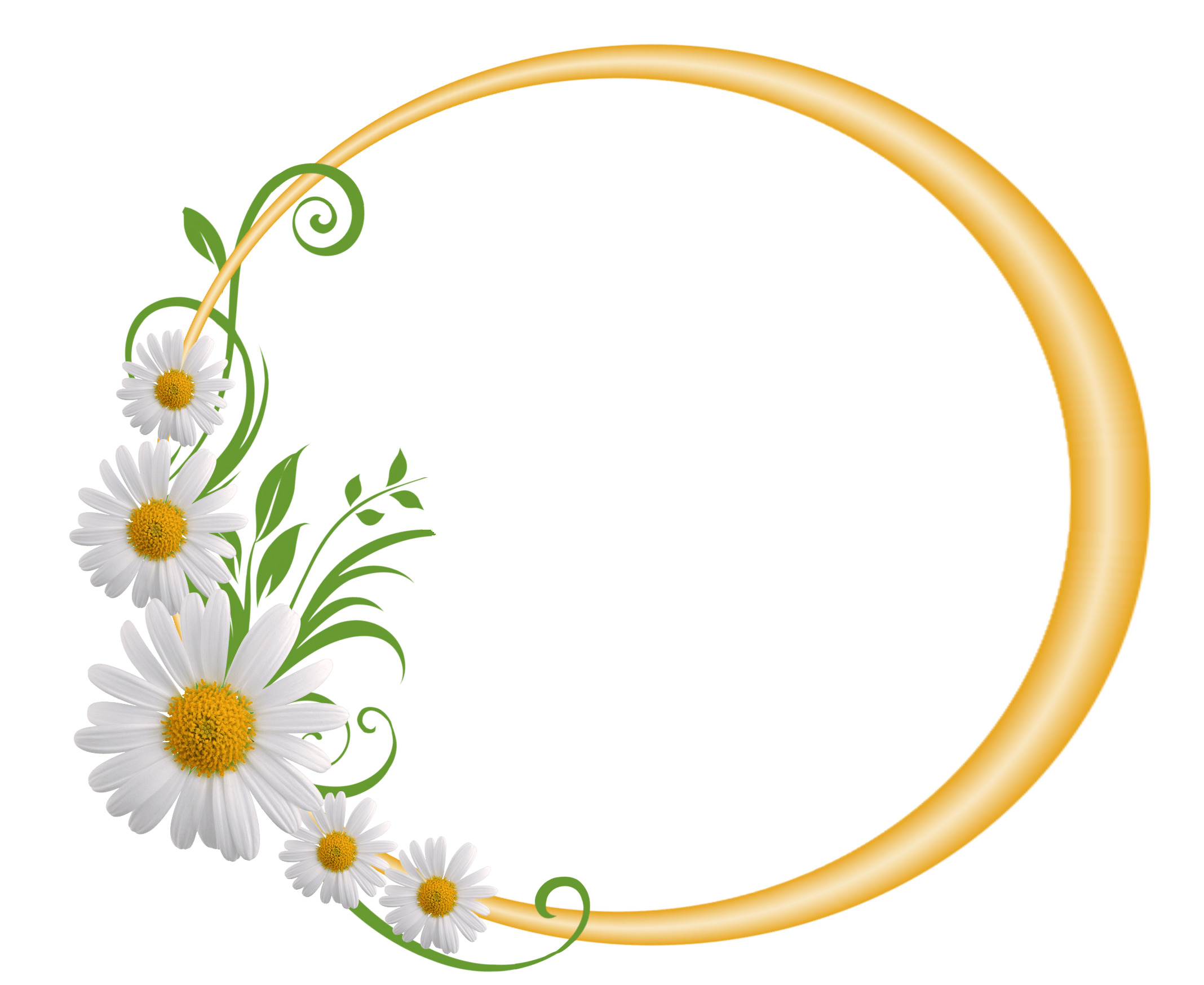 Yellow Round Frame with Daisies Hej Pinterest Clip