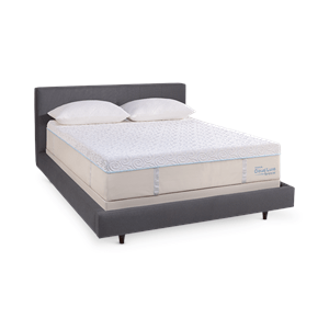 Explore Bed Mattress Master Bedroom Redo And More