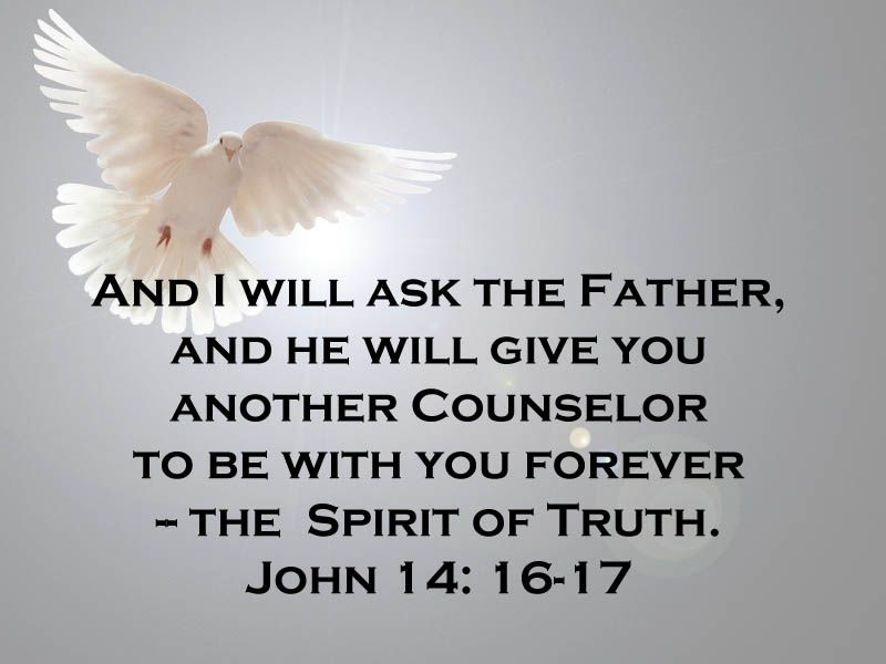 Image result for john 14:16