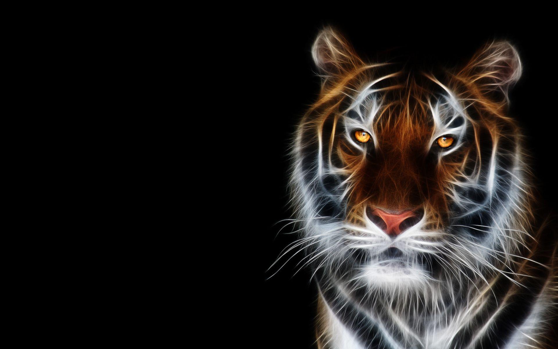 3D Tiger 3D Animals Pinterest 3d, Tigers and Animal