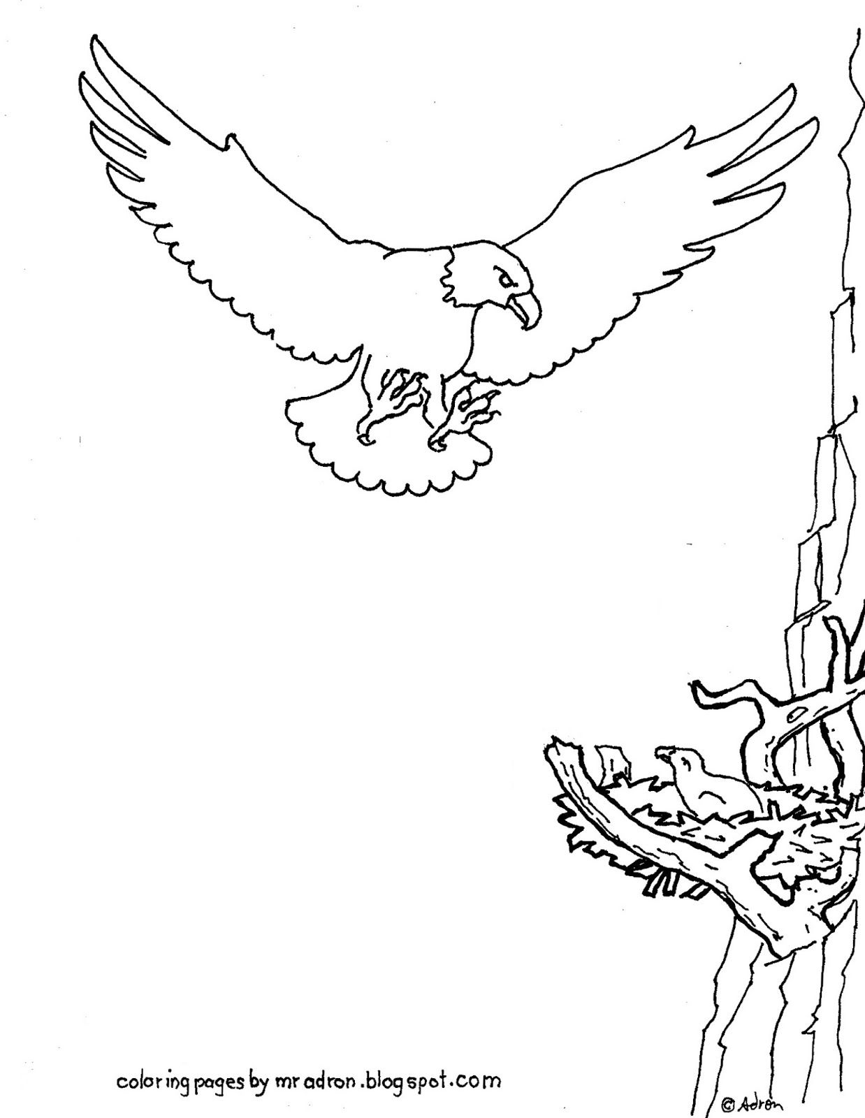 Coloring Pages For Kids By Mr Adron Printable Eagle Coloring Page