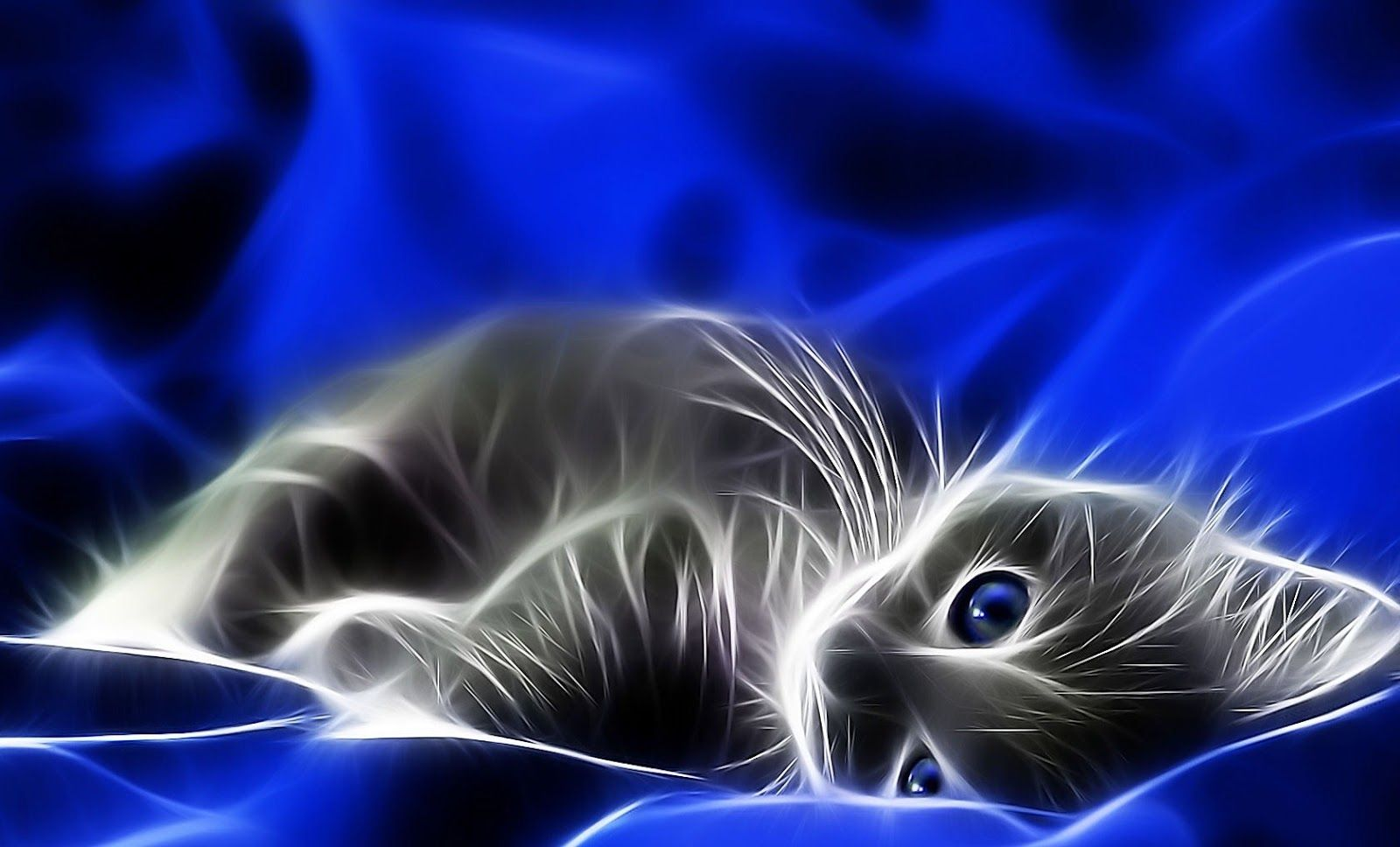 Wallpapers And Backgrounds Fantasy Cats Wallpaper