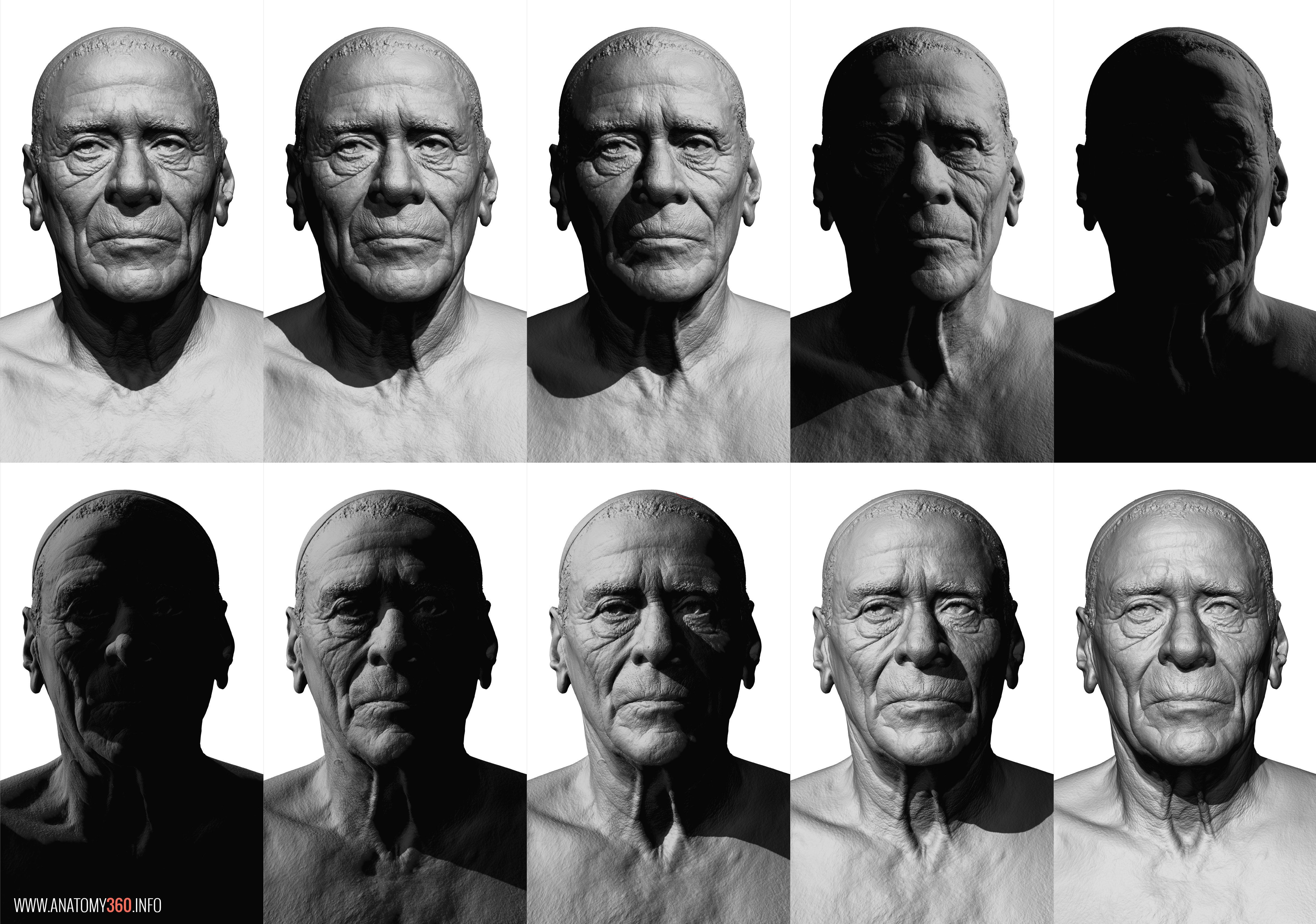 Cg Scanned Head Lighting Reference Atomy360fo Anatomy Scan Reference Dump