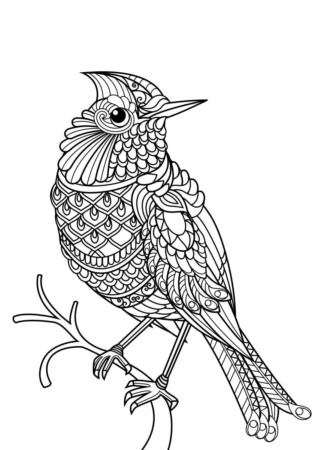 Animal coloring pages pdf | Adult coloring, Dog cat and ... | coloring books for adults animals
