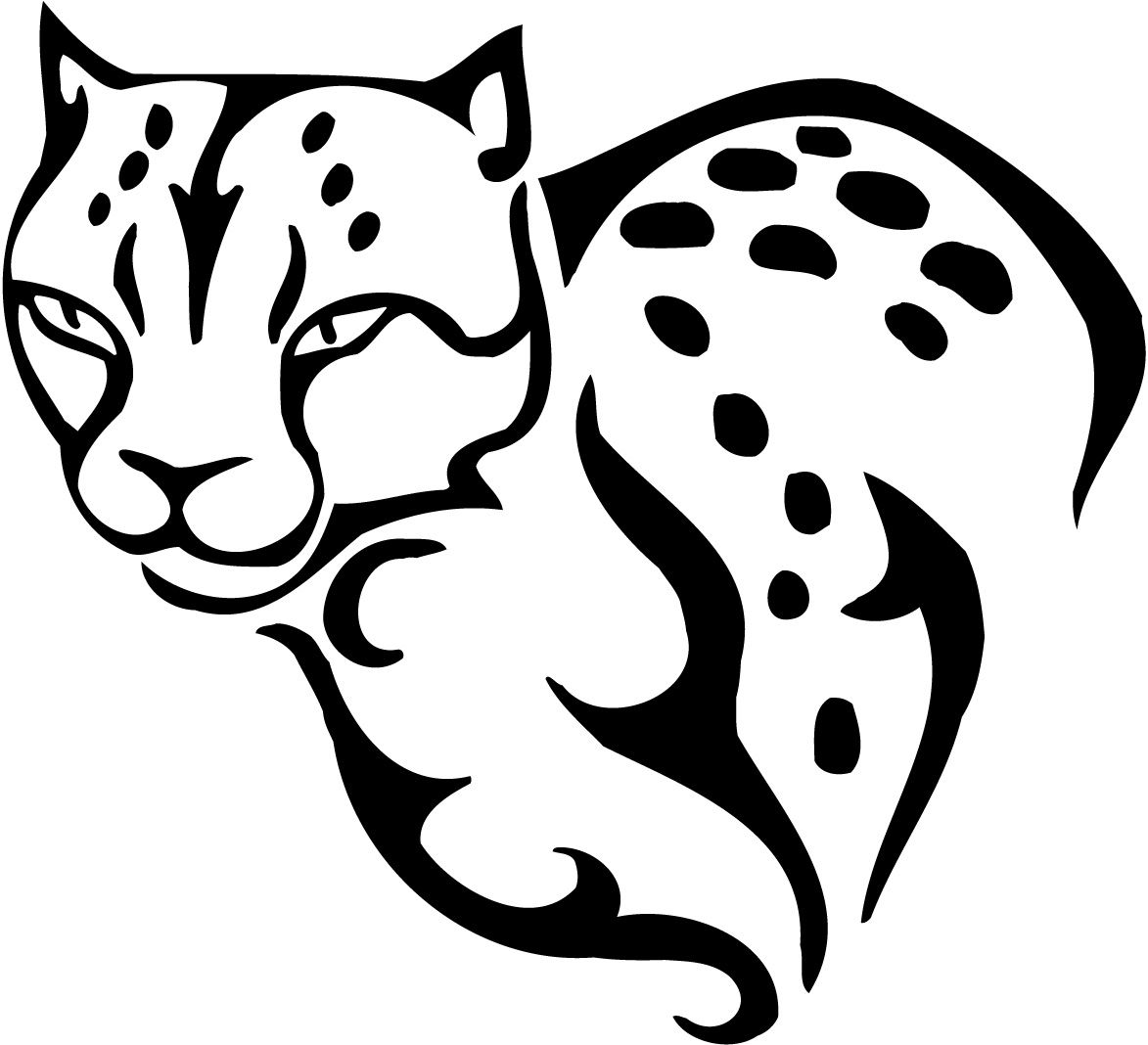 cheetahs kids coloring and for kids on pinterest
