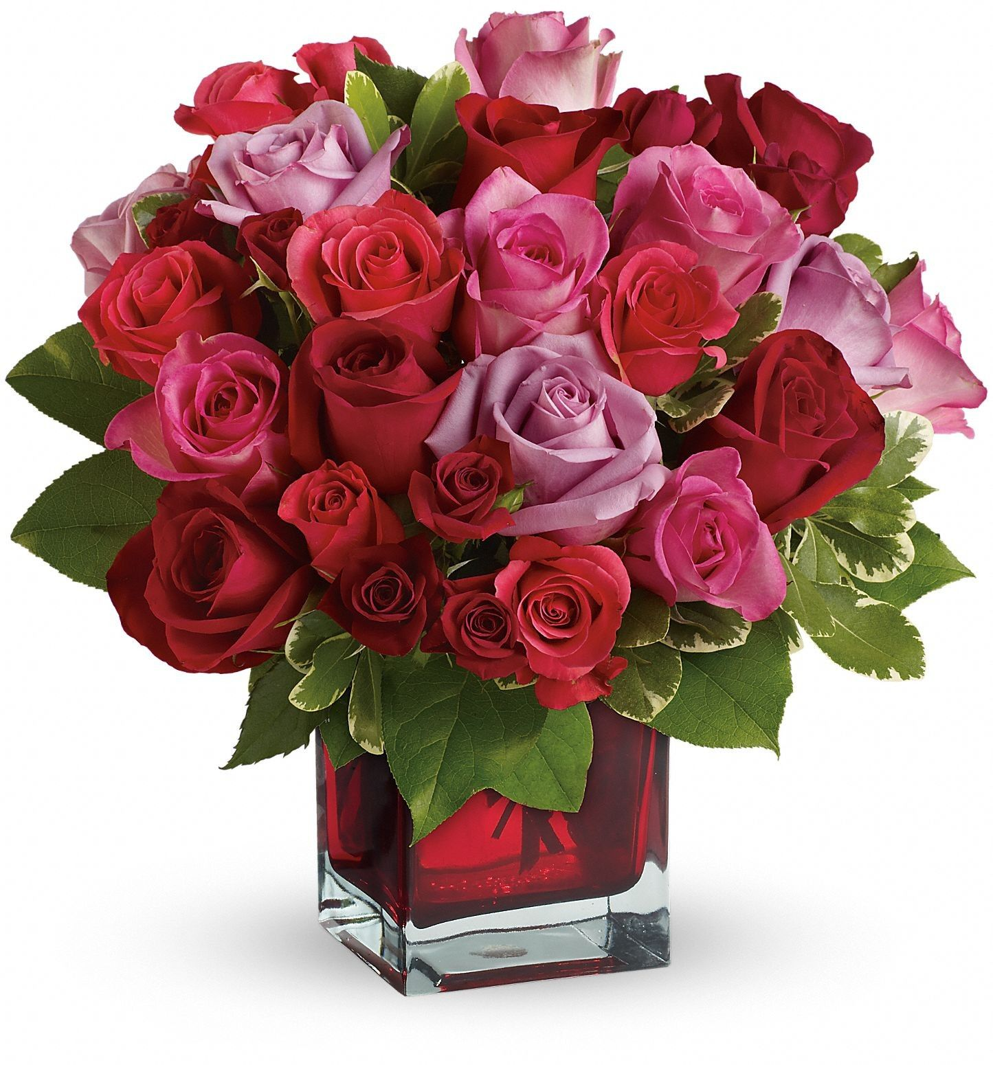 Birthday Flowers Roses Beautiful for Love You Download