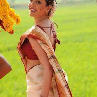 Kajal Agarwal back side pose