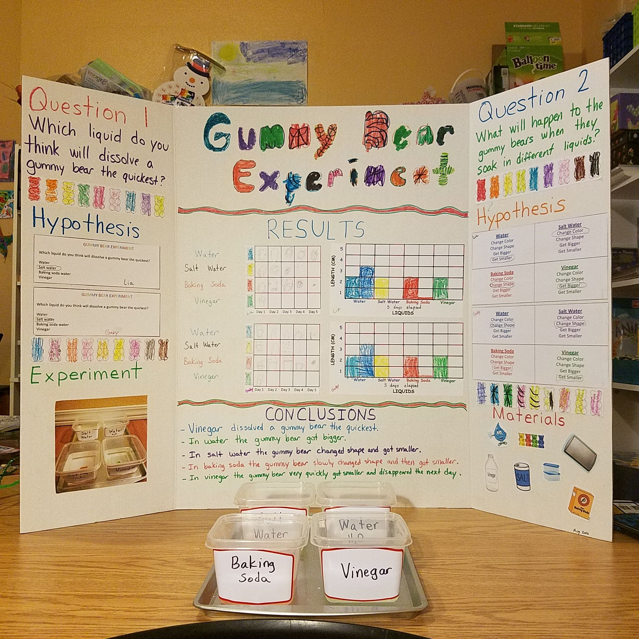 Scientific Method Gummy Bear Experiment Science Fair Some Of The Worksheets I Made Myself