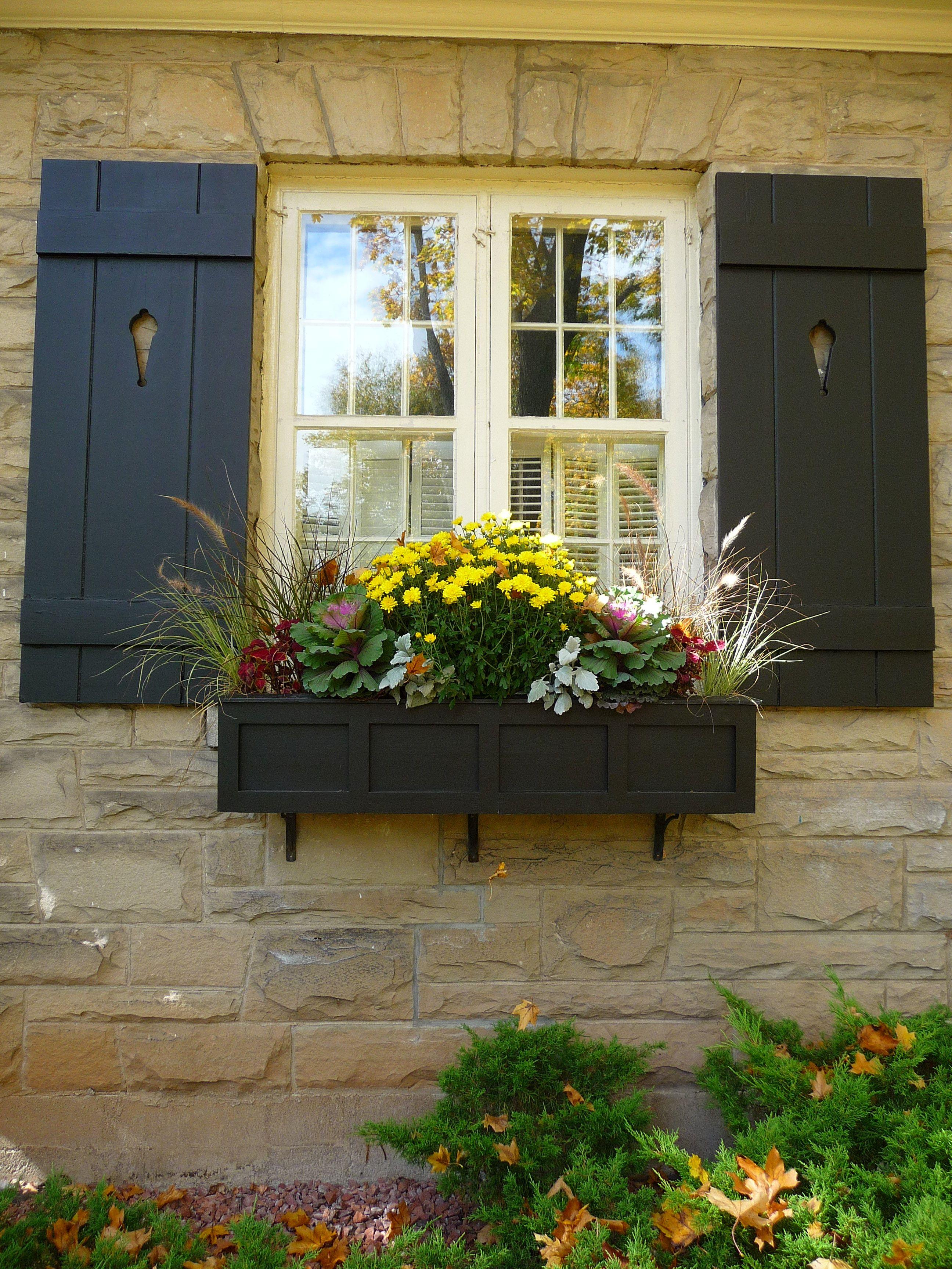 fall window box mums, coleus, kale, ornamental grass