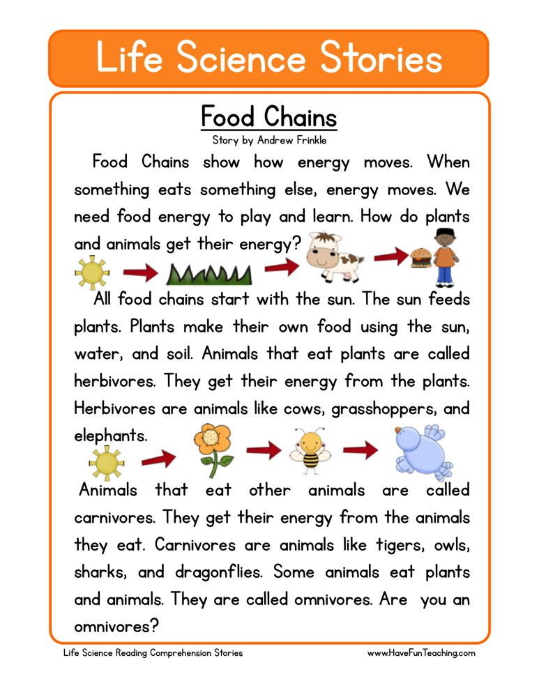 This Reading Comprehension Worksheet Food Chains is for
