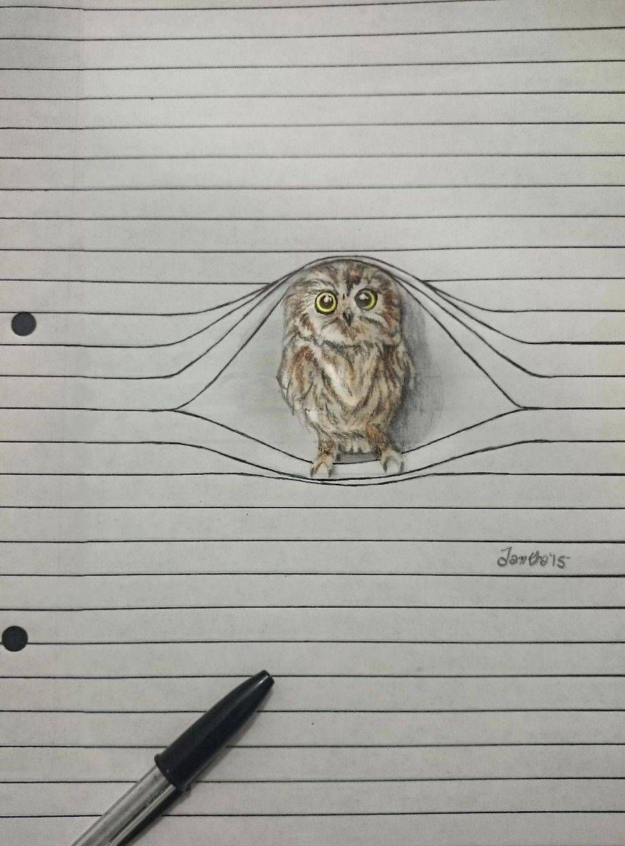 Cute Animal Pencil Drawings Animal pencil drawings
