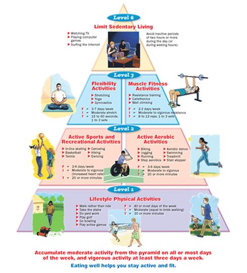 Physical Activity Pyramid الهرم Pinterest Activities