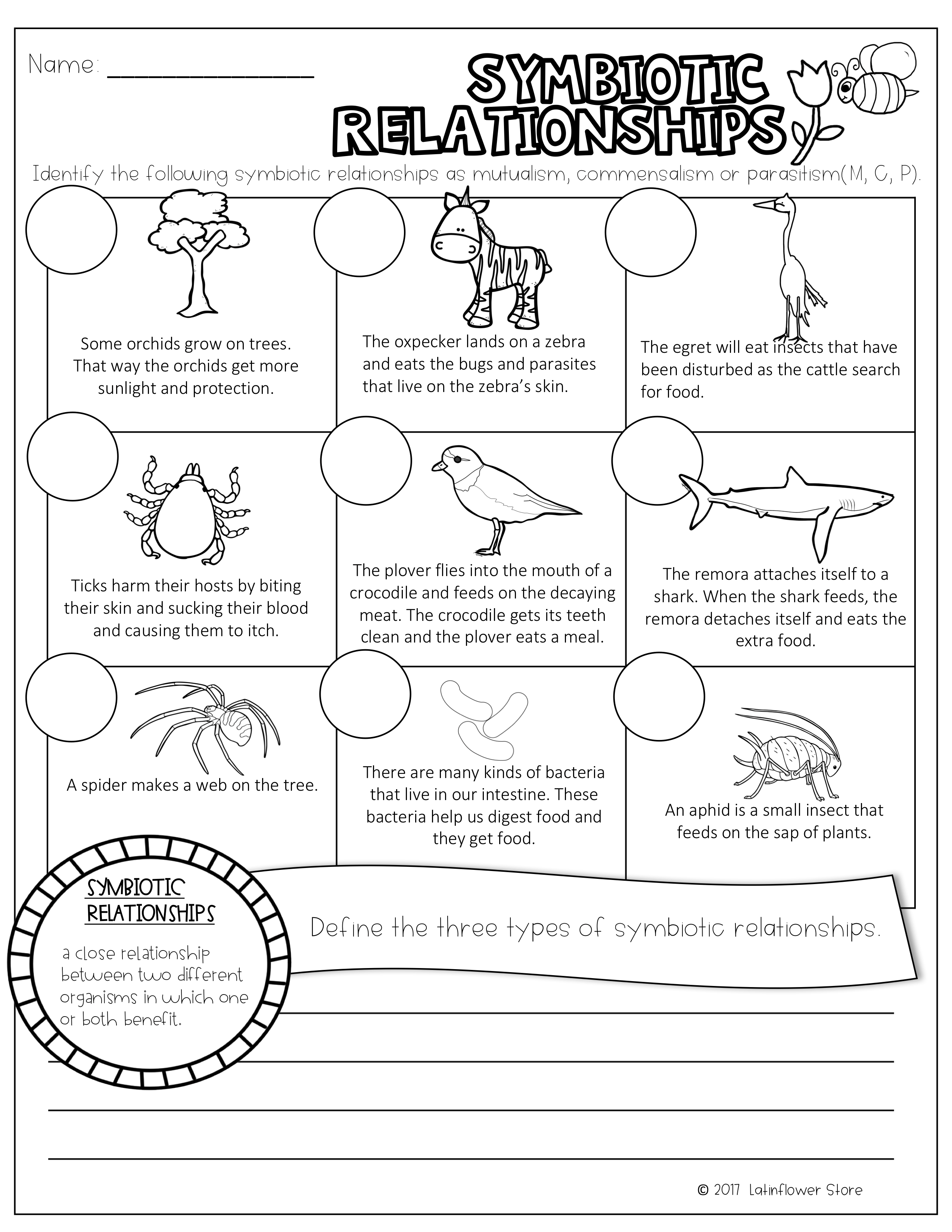 Worksheet Types Of Symbiosis Worksheet Grass Fedjp
