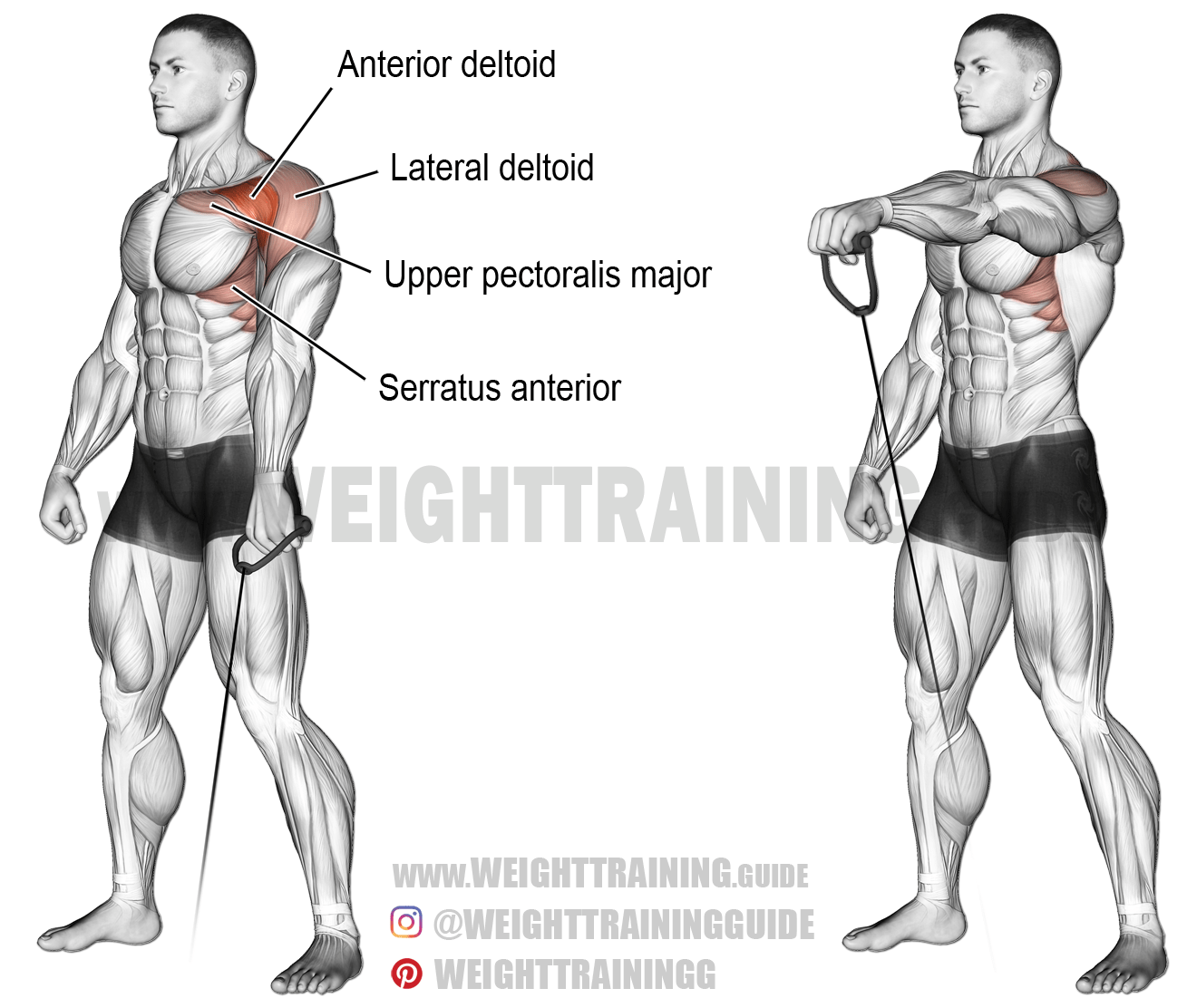 Cable One Arm Front Raise A Unilateral Isolation Exercise