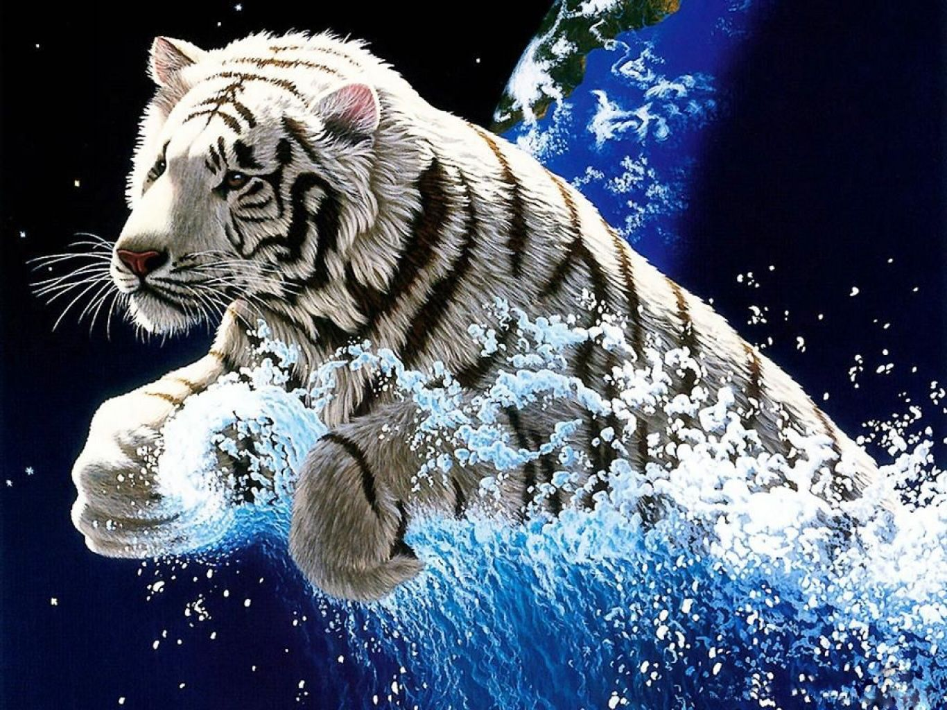 Tigre blanc. Tigre Blanco Pinterest Wallpapers