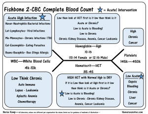 The CBC Complete Blood Count diagram on Meducation