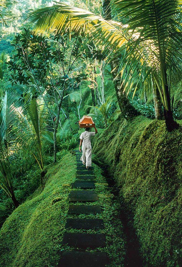 Begawan Giri Resort, Bali Photograph by Justin Guariglia