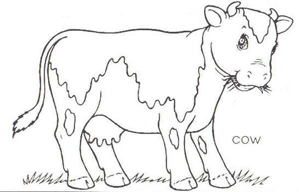 funny pig coloring page for kids beading coloring pinterest