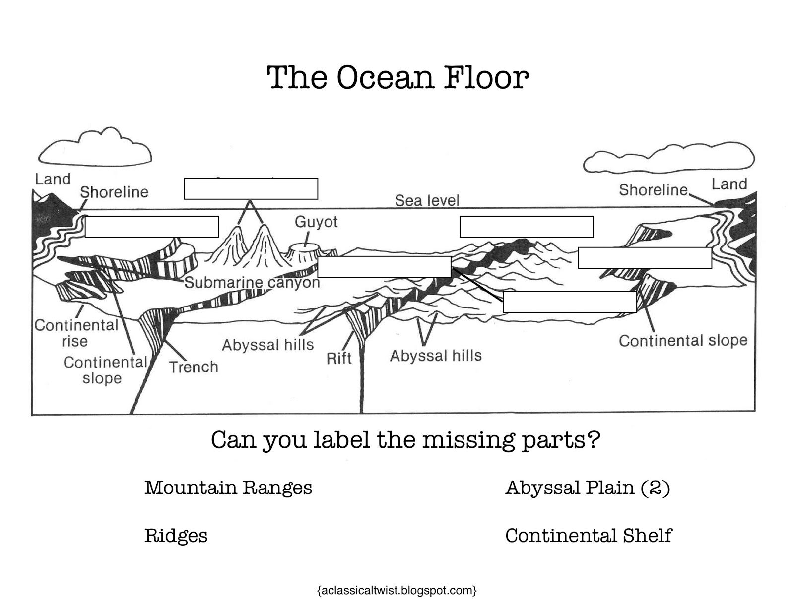 Homeschooling With A Classical Twist Cc Cycle 1 Week 18 Ocean Floor