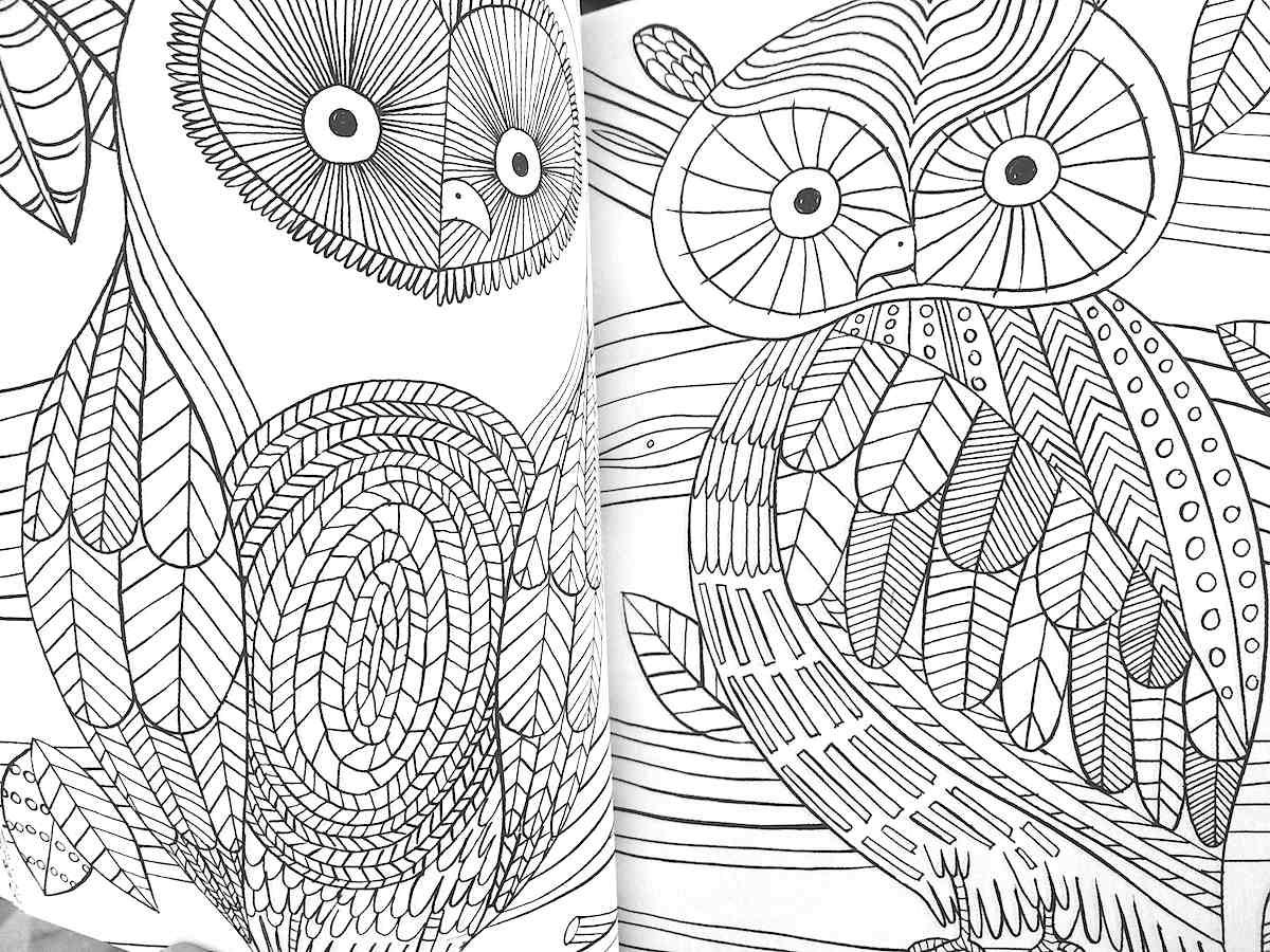 The Mindfulness Coloring Book Anti Stress Art Therapy For
