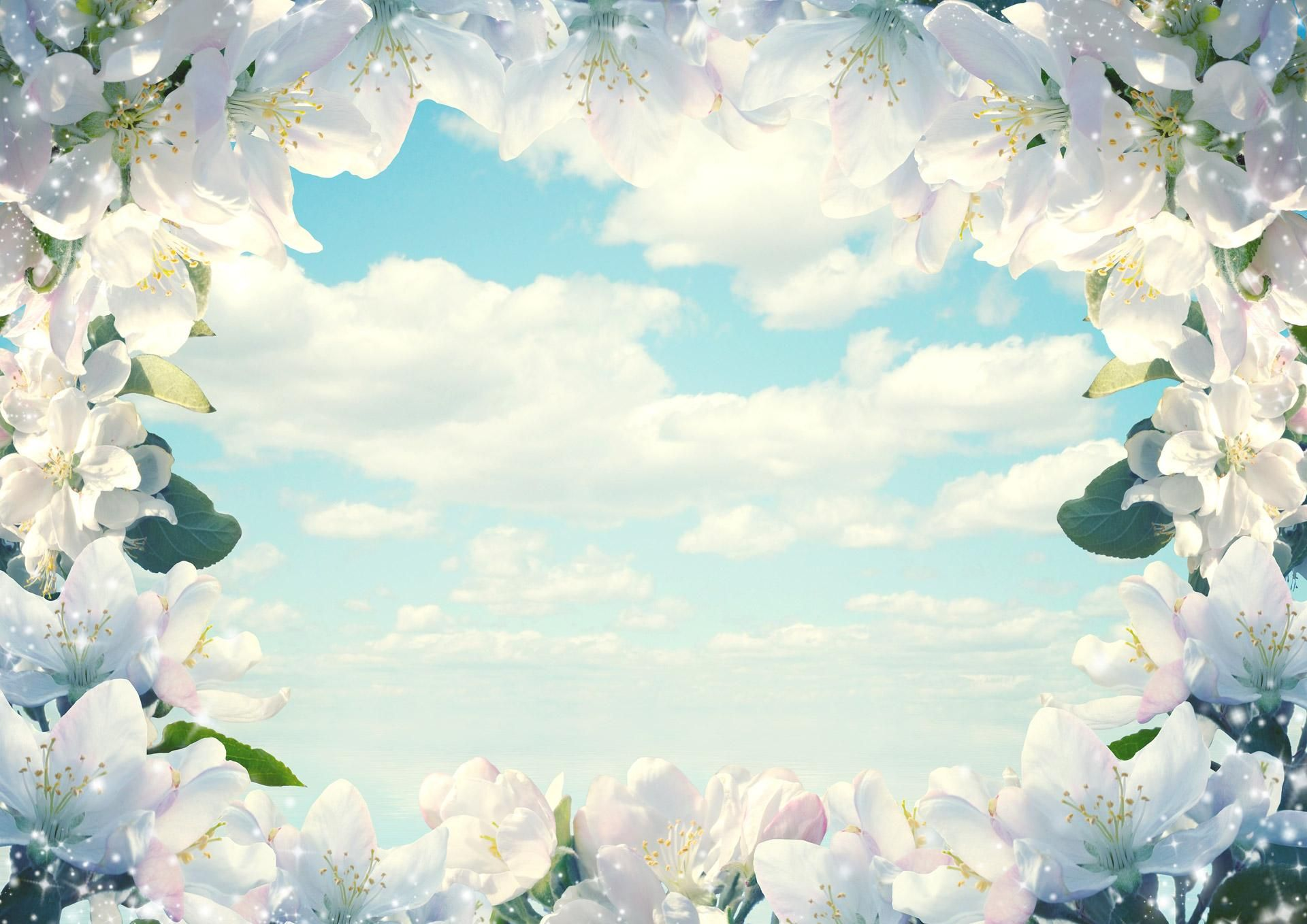 Fantastic Frame Of Flowers Download Hd Pictures Wallpaper
