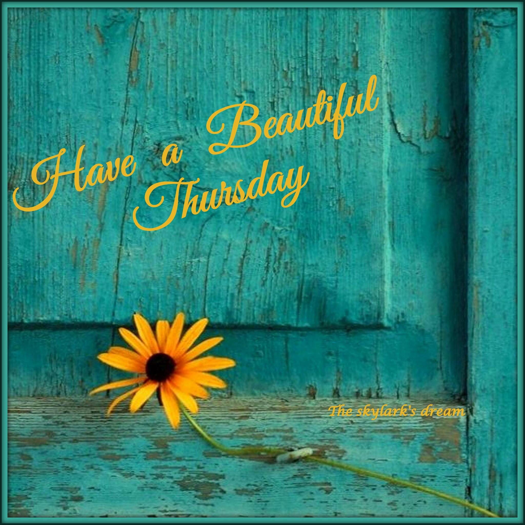 Have a beautiful Thursday! ️ Greetings & More
