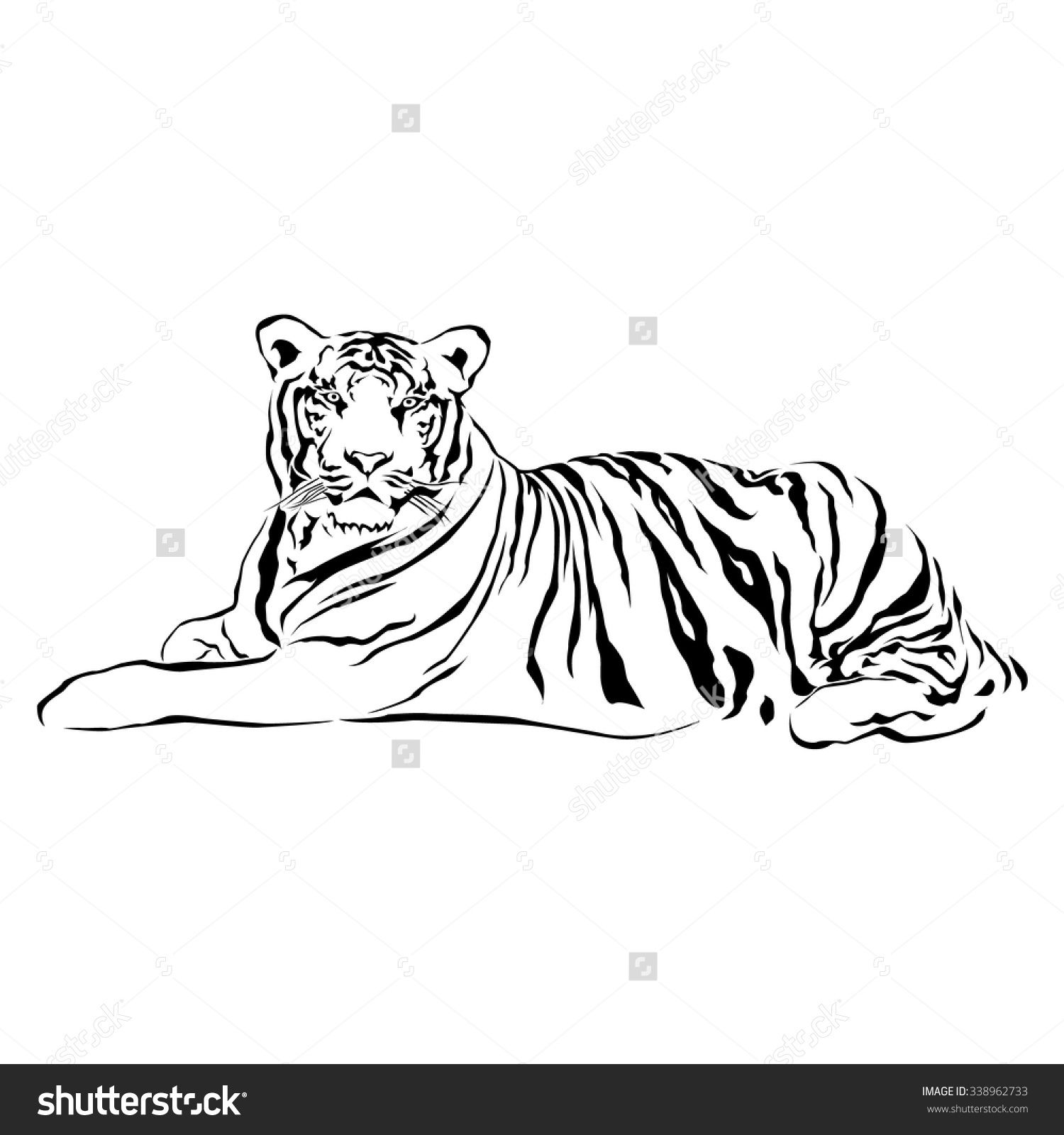 Tiger Sitting Black And White Vector