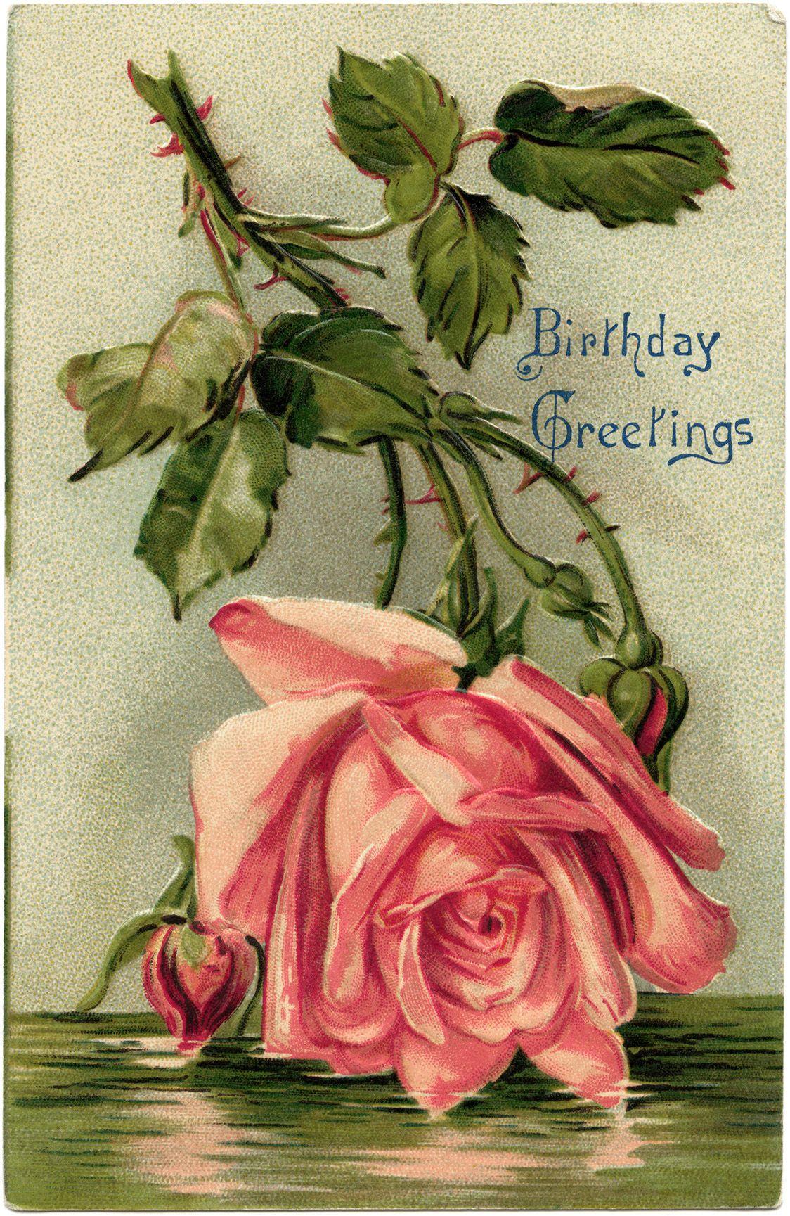 Victorian postcard graphics, vintage birthday postcard