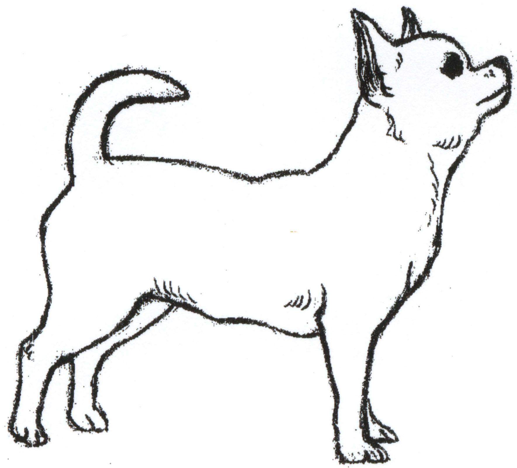 Chihuahua Drawing Wallpaper